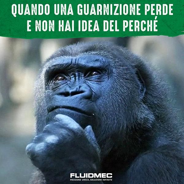 FLUIDMEC 2