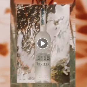 Belvedere-Vodka-distillato-Polonia